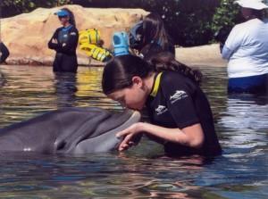 Sărutând delfinul