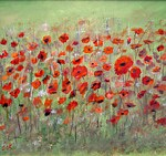 first-poppies-dorothy-maier