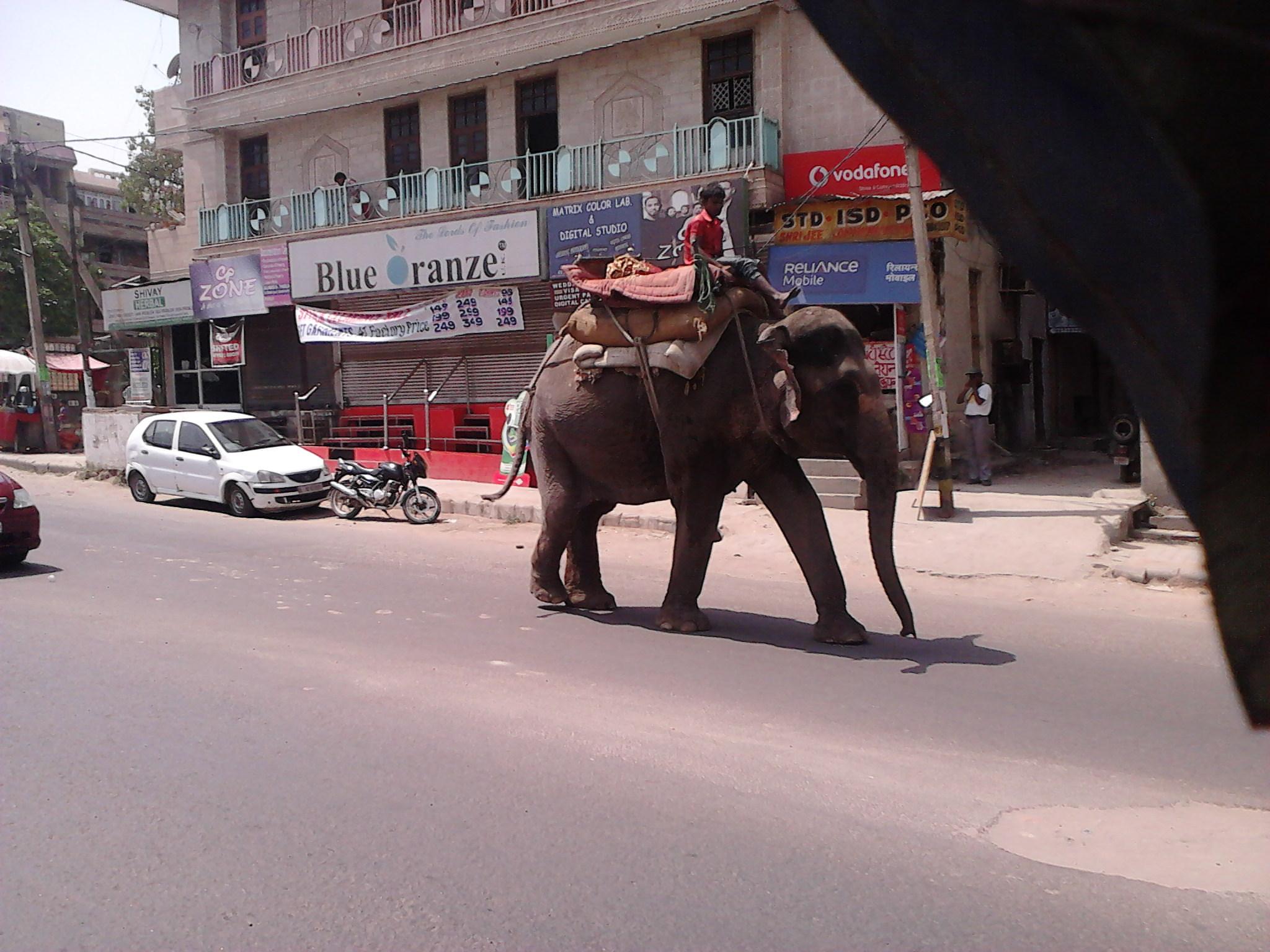 Strada in Delhi