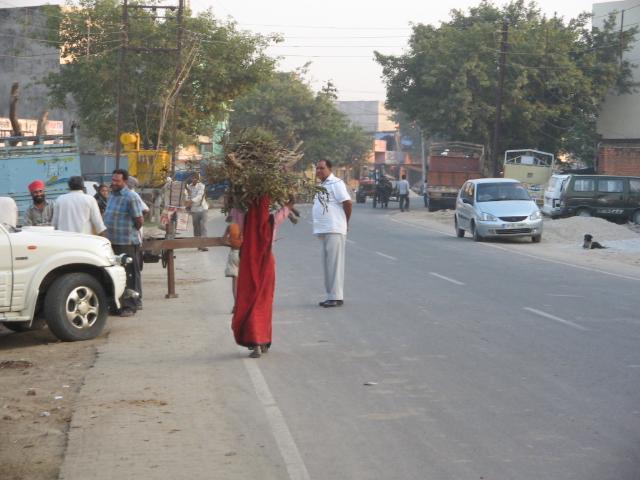 satul indian