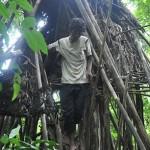 vietnam jungle home 5